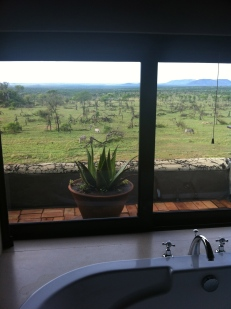 Bathroom view