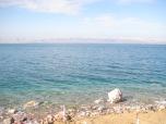 Dead 'Duh' Sea