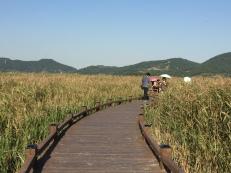 Suncheon Eco Park