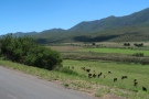 Leaving Bavianskloof